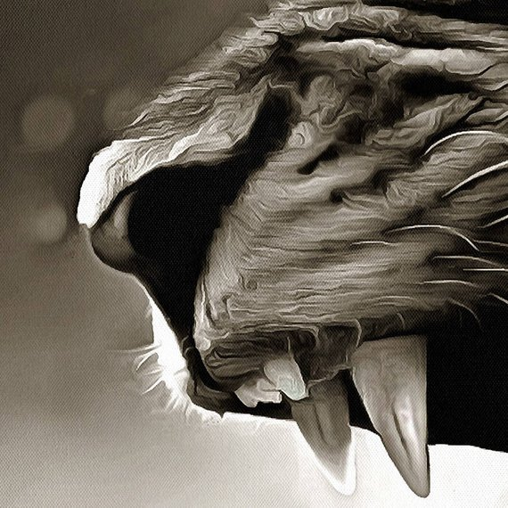Homeanimals Wild Lioness Canvas Large Art Painting Black And White Lion